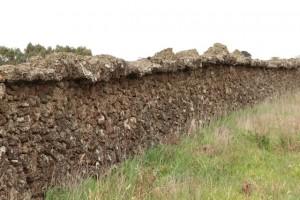 The Rabbit Wall, Pomboneit North, Vic (2)