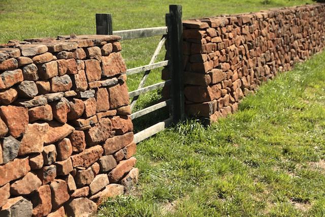 3-Willows Vineyard Wall (4)