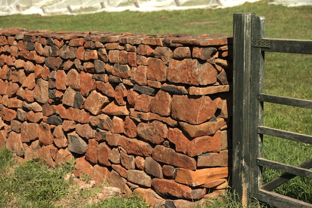3-Willows Vineyard Wall (5)