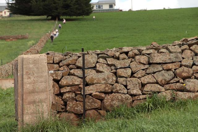 Bonney's Farm, Deloraine, wallers- Chipper Lovegrove, Vic Cohen & Jim Bonney (12)