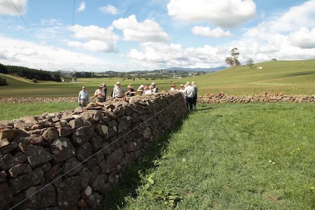 Bonney's Farm, Deloraine, wallers- Chipper Lovegrove, Vic Cohen & Jim Bonney (6)