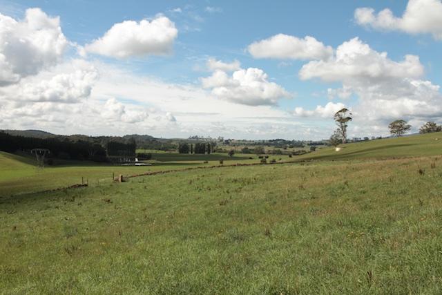 Bonney's Farm, Deloraine, wallers- Chipper Lovegrove, Vic Cohen & Jim Bonney
