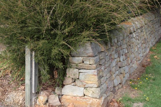 Meander School wall (2)