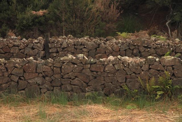 Meander Rise Sheep Wash (17)