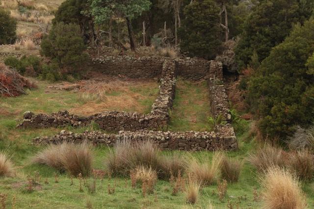 Meander Rise Sheep Wash (2)