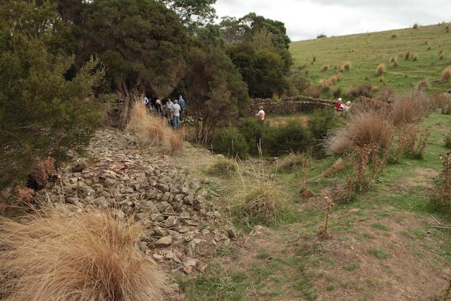 Meander Rise Sheep Wash (5)