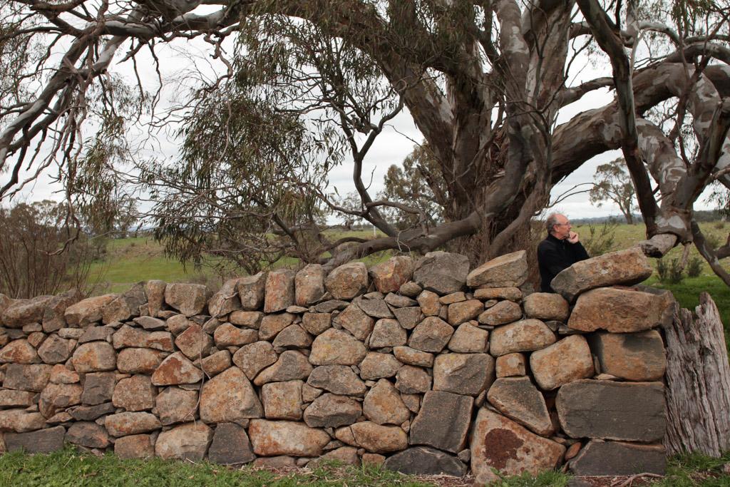 Brady Property Gibbards Lane sheep fold or agri shelter-11