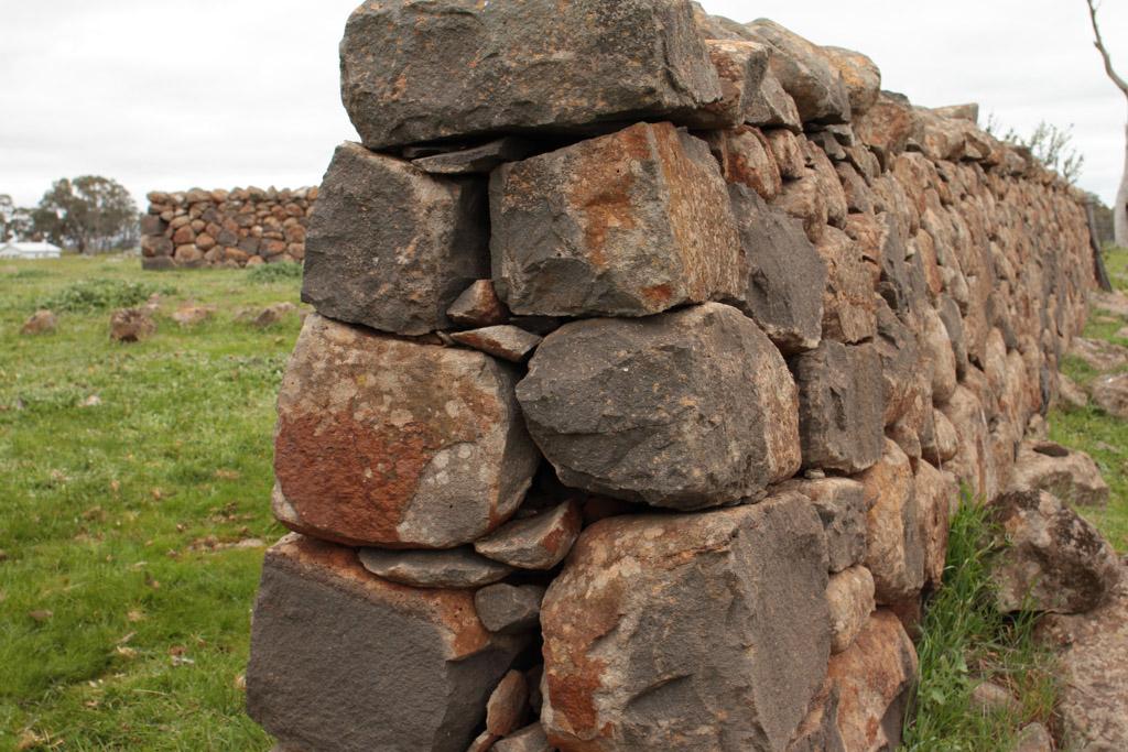 Brady Property Gibbards Lane sheep fold or agri shelter-23