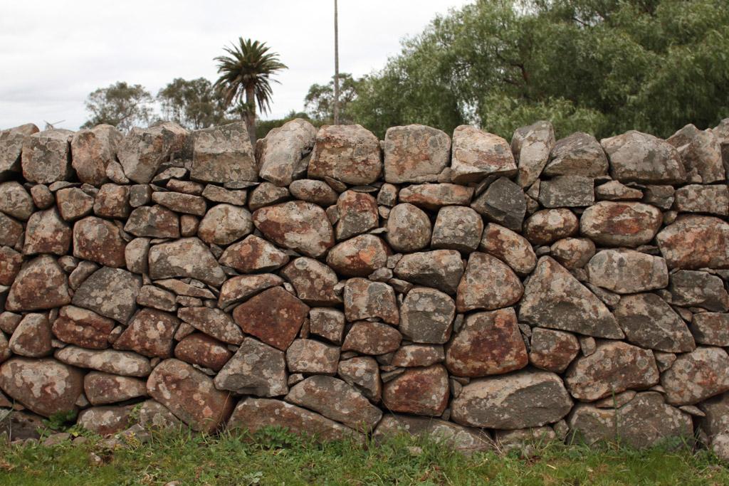 Brady Property Gibbards Lane sheep fold or agri shelter–3