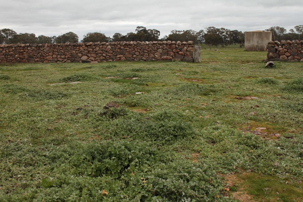 Brady Property Gibbards Lane sheep fold or agri shelter–5