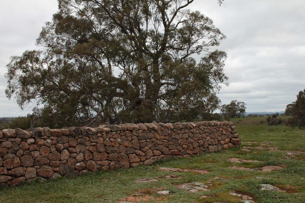 Brady Property Gibbards Lane sheep fold or agri shelter-6