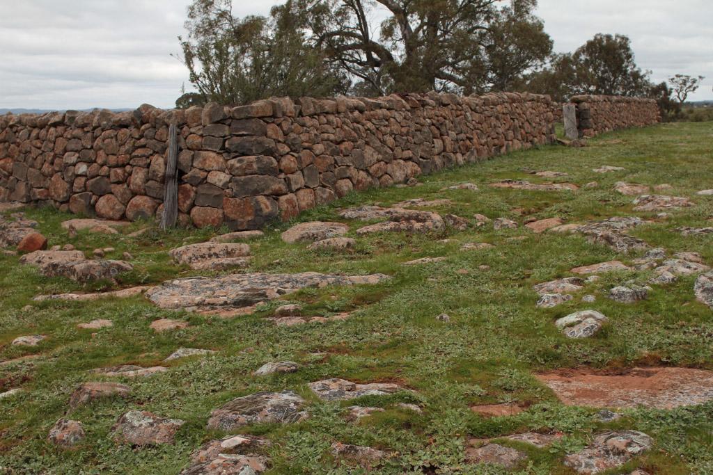 Brady Property Gibbards Lane sheep fold or agri shelter